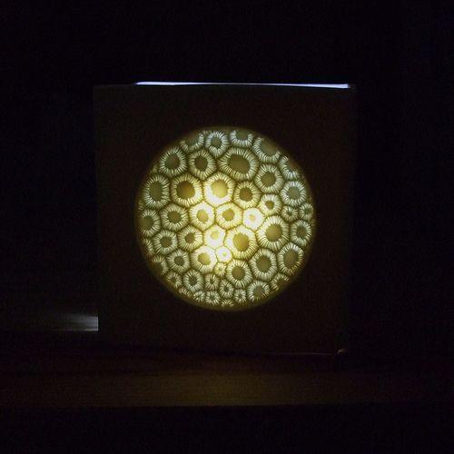 lamp experiment