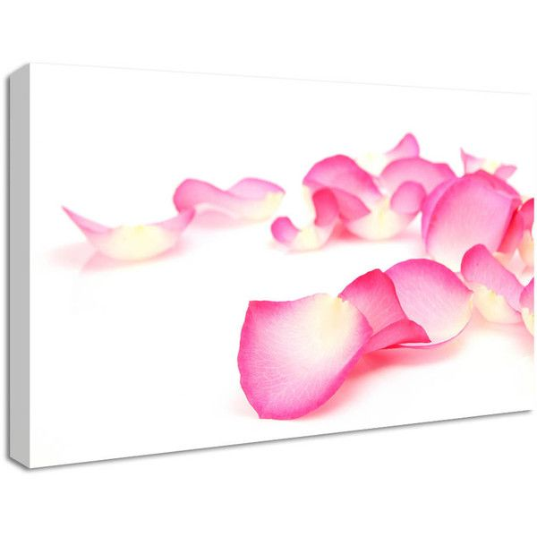 NuCasa Pink Rose Petals Canvas Print ($44) ❤ liked on Polyvore