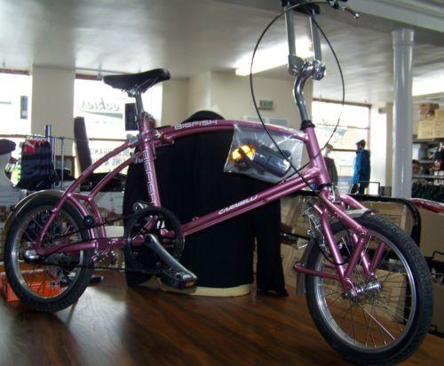 Bigfish Wave Folding Bike Colour Pink Or Gold Rrp 650 My Price 150