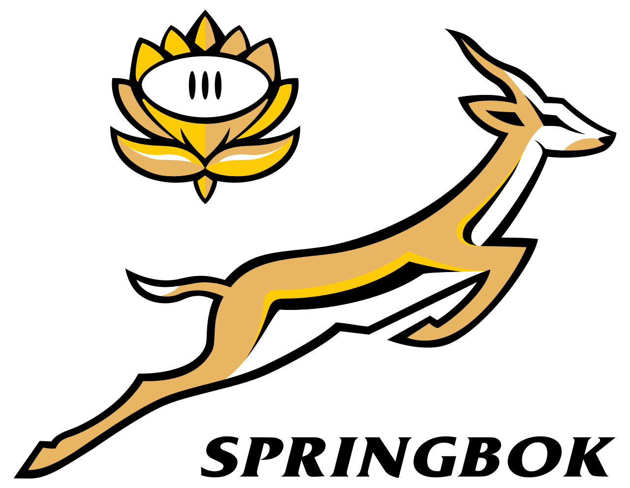 The South African National Animal Is The Springbok This Symbol Is Also Widely Known For The South African Nation Springbok Rugby South Africa Rugby Rugby Logo