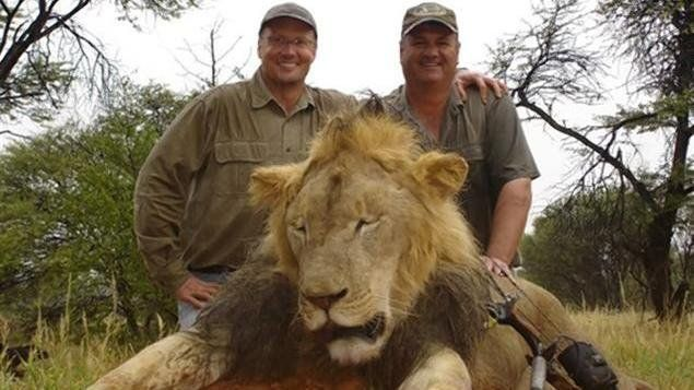 Petition · Animal Activist, Council of the European Union Help - business petition