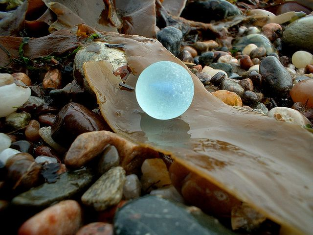 """""""Like finding the moon....such a cool beach find""""."""