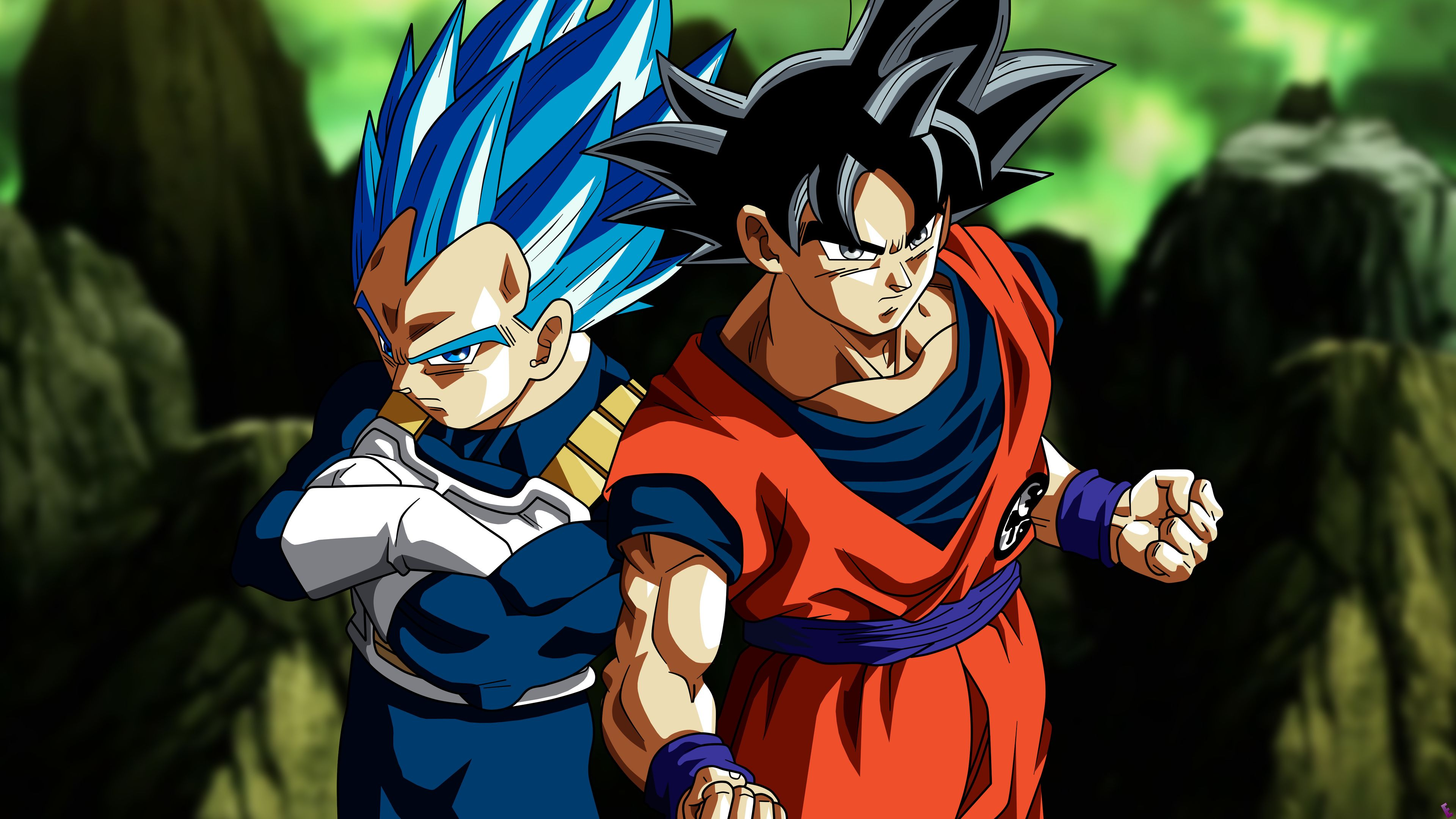 Dragon Ball Super Wallpaper 4k Phone Goku Goku E Vegeta Dragon