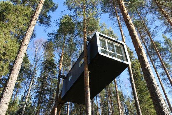 Stay In A Tree Hotel Sweden