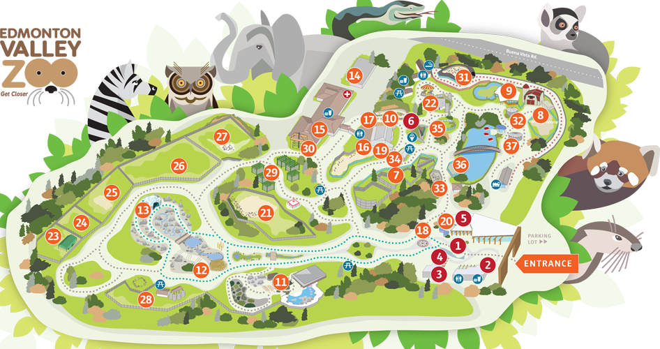 Zoo Map City Of Edmonton Zoo Map Theme Park Map Illustrated Map