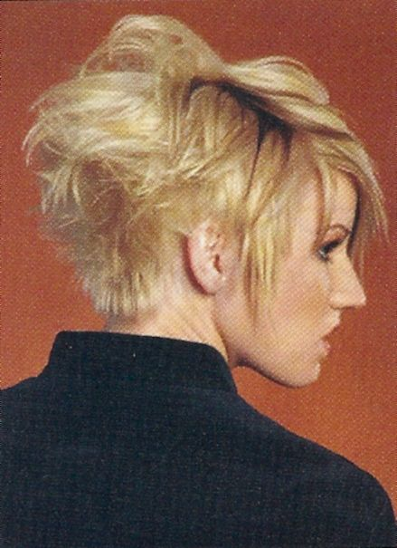 Back View Of Asymmetrical Bob Hairstyle Sassy Longer A Line Pixie