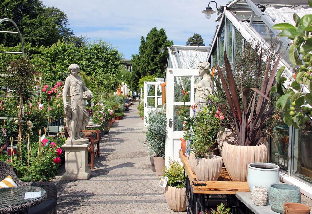 Home Konigliche Gartenakademie Stauden Garten Gartengestaltung