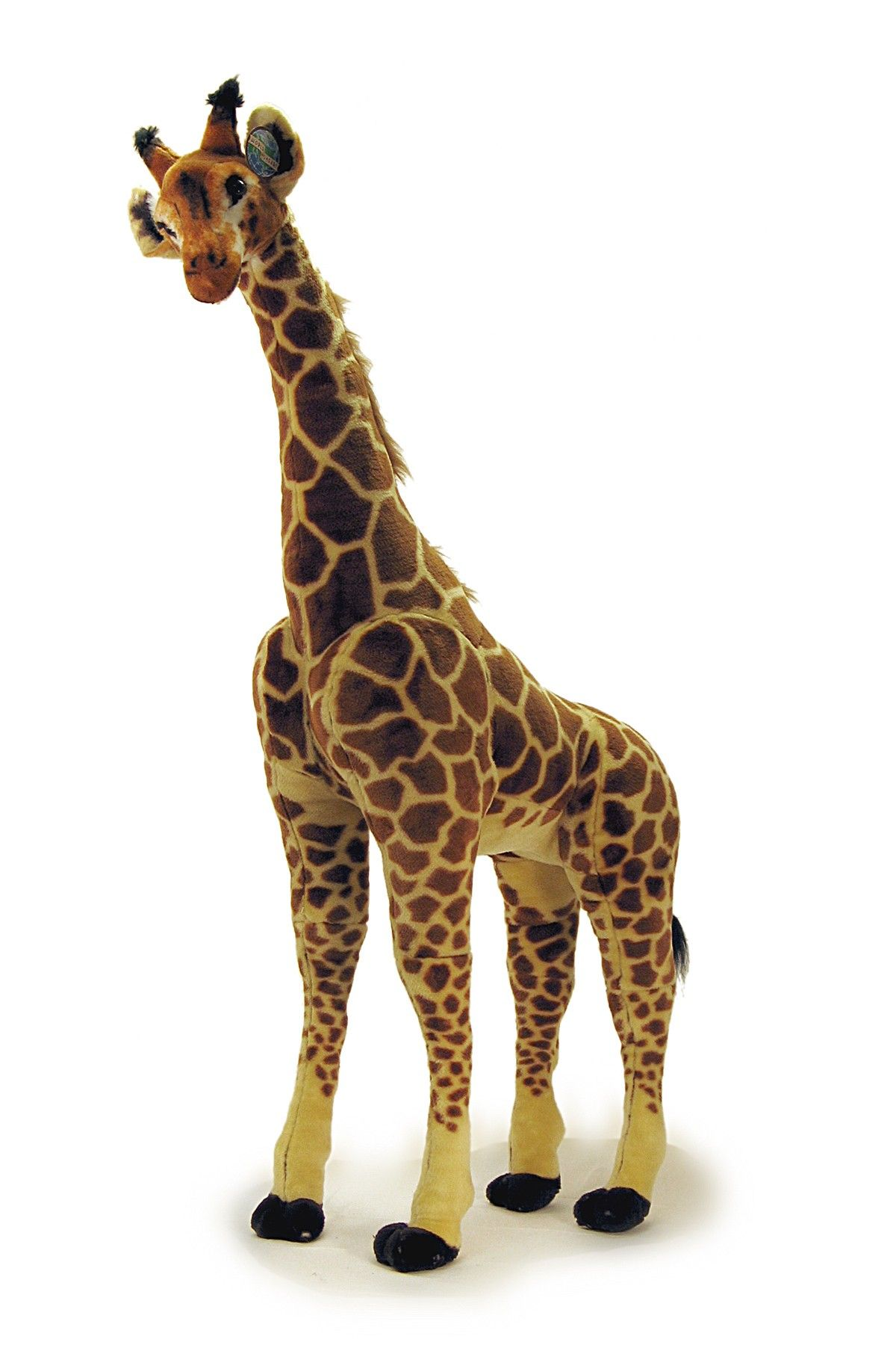 Hautelook Warehouse 36 58 Giraffe Giant Giraffe Giraffe Art [ 1800 x 1200 Pixel ]