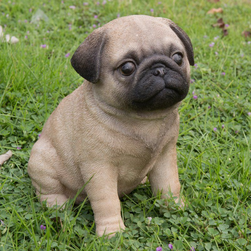 Sitting Pug Puppy Garden Statue   Oodles Of Wrinkles And Texture Give The  Hi Line Gift Ltd. Sitting Pug Puppy Garden Statue An Original Look.