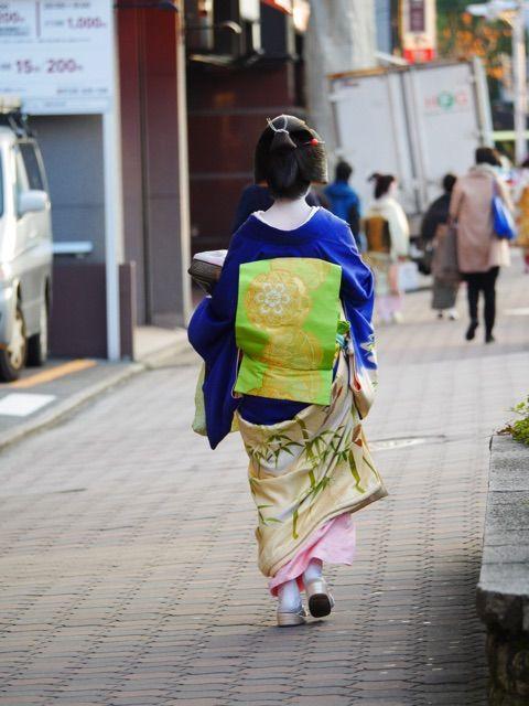 December 2015: geiko Sayaka of Gion Kobu in a bamboo kimono by midori42 - blog