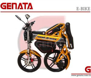 Patented 1500w 500w Eec Folding Electric Bike Gm890e With