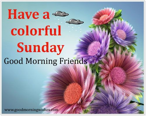 Good Morning And Happy Sunday Text : Have a colorful sunday good morning wishes