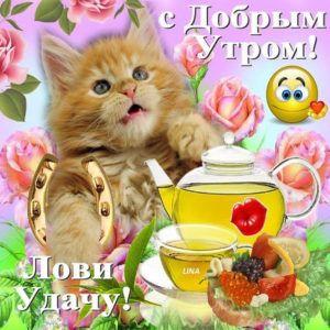 открытки с добрым утром картинки