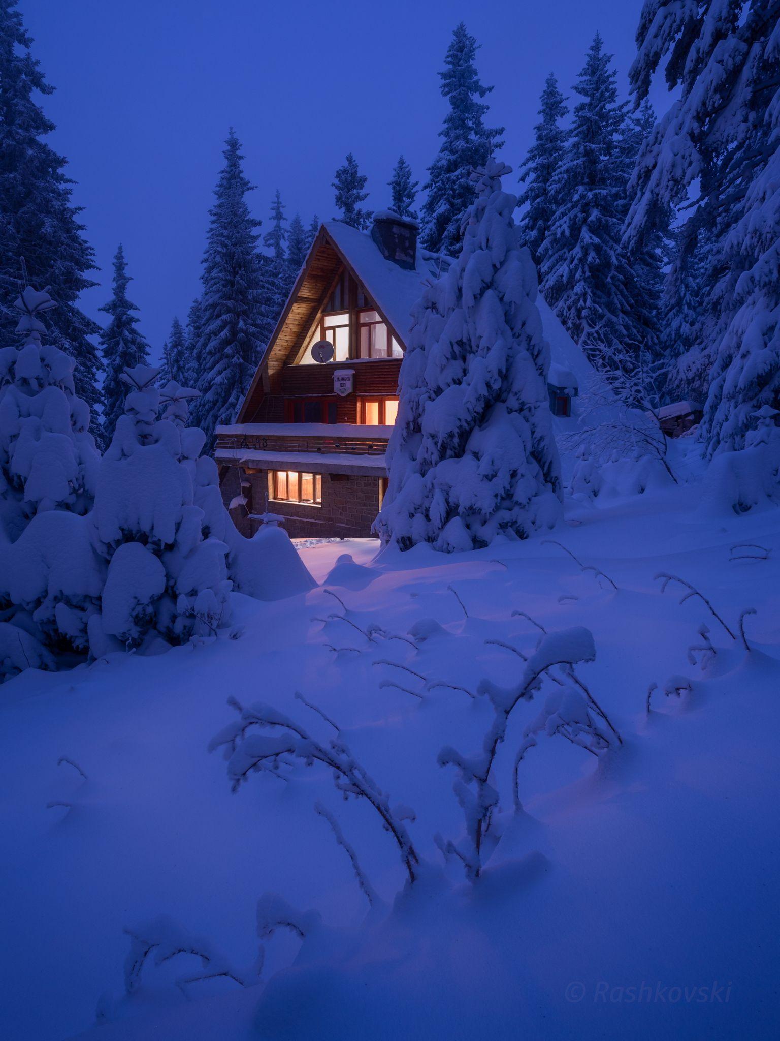 Дом в лесу картинки зима
