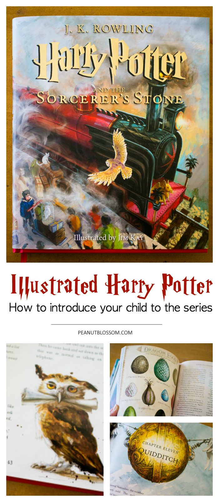 Wondering Whether Your Kids Are At The Perfect Harry Potter Age Reading The Illustrated Harry Potter Books To Your Childre Harry Potter Age Harry Potter Harry What is appropriate age to read harry