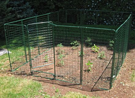 Garden Defender Is The Most Popular Fence Protection System And The Most  Reliable Solution For Keeping. Vegetables ...