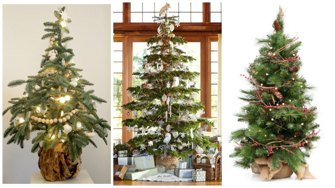 Olá pessoal!! Dezembro está chegando e muita gente já está preparando adecoração natalina da casa. E você já sabe qual será a árvore deste Natal?Ponto-chave para conferir o clima lúdico da festa,…