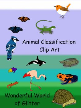 Presenting Clip Art For Your Animal Classification Science Units I Created Many Different Animals Such As A Snail A Bu Animal Classification Clip Art Animals
