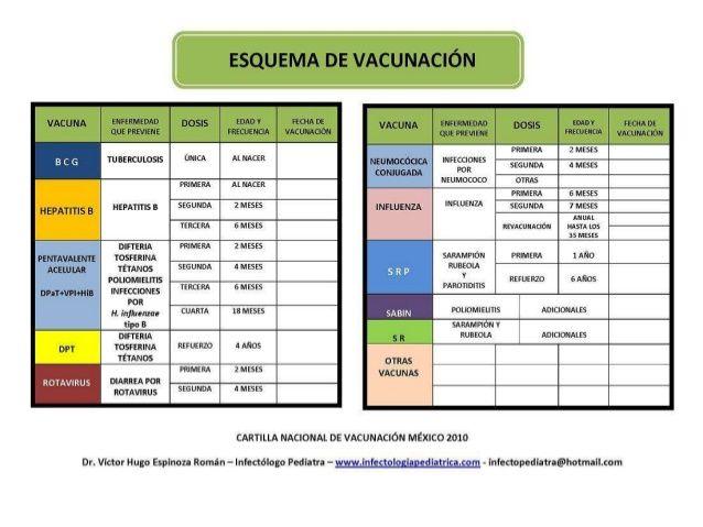 Resultado de imagen para esquema de vacunación actual ...