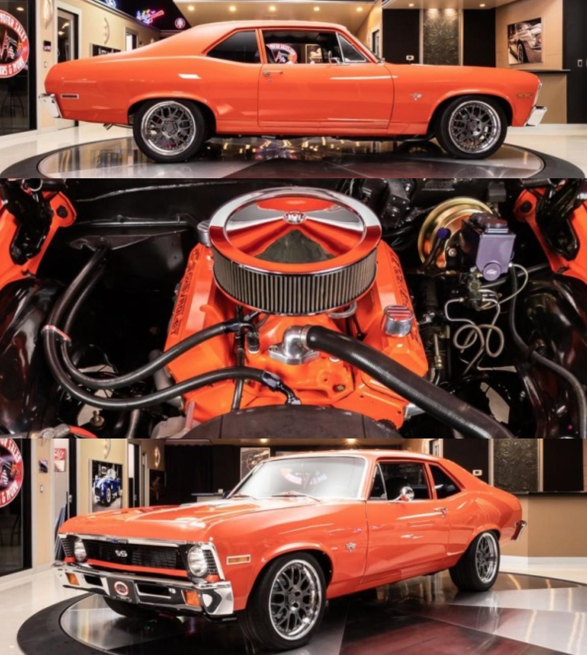 1972 Chevrolet Nova In 2020 Chevrolet Nova Chevy Muscle Cars Dream Cars