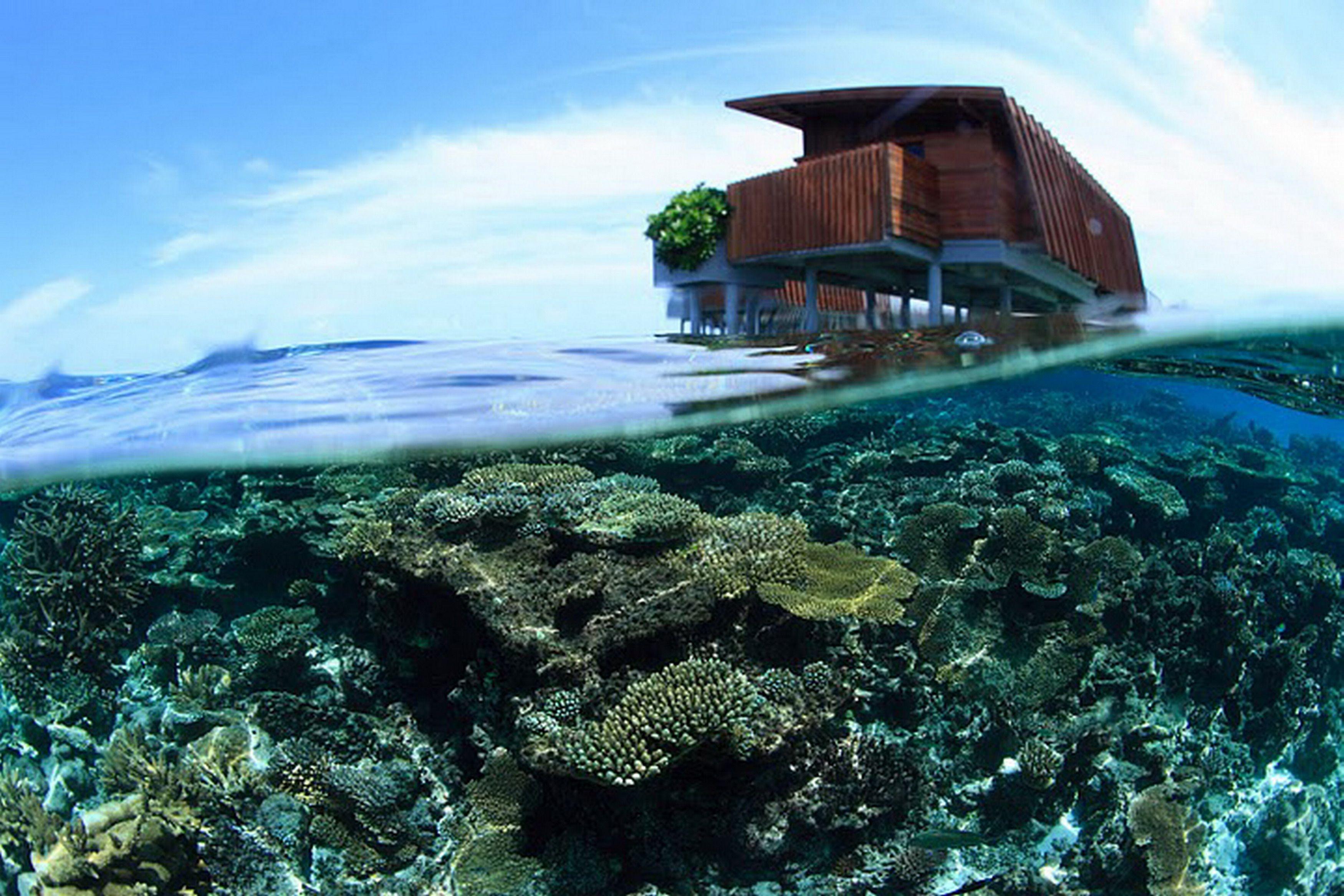 Underwater below the Park Villas at Park Hyatt Maldives Hadahaa, interior design by HBA/Hirsch Bedner Associates.
