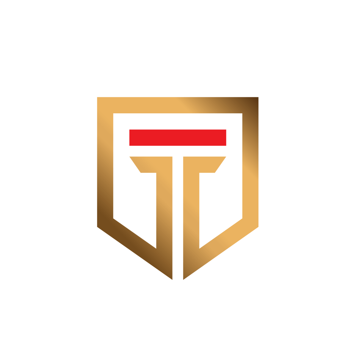 Taksoo Letter Logo Letter T Lettering