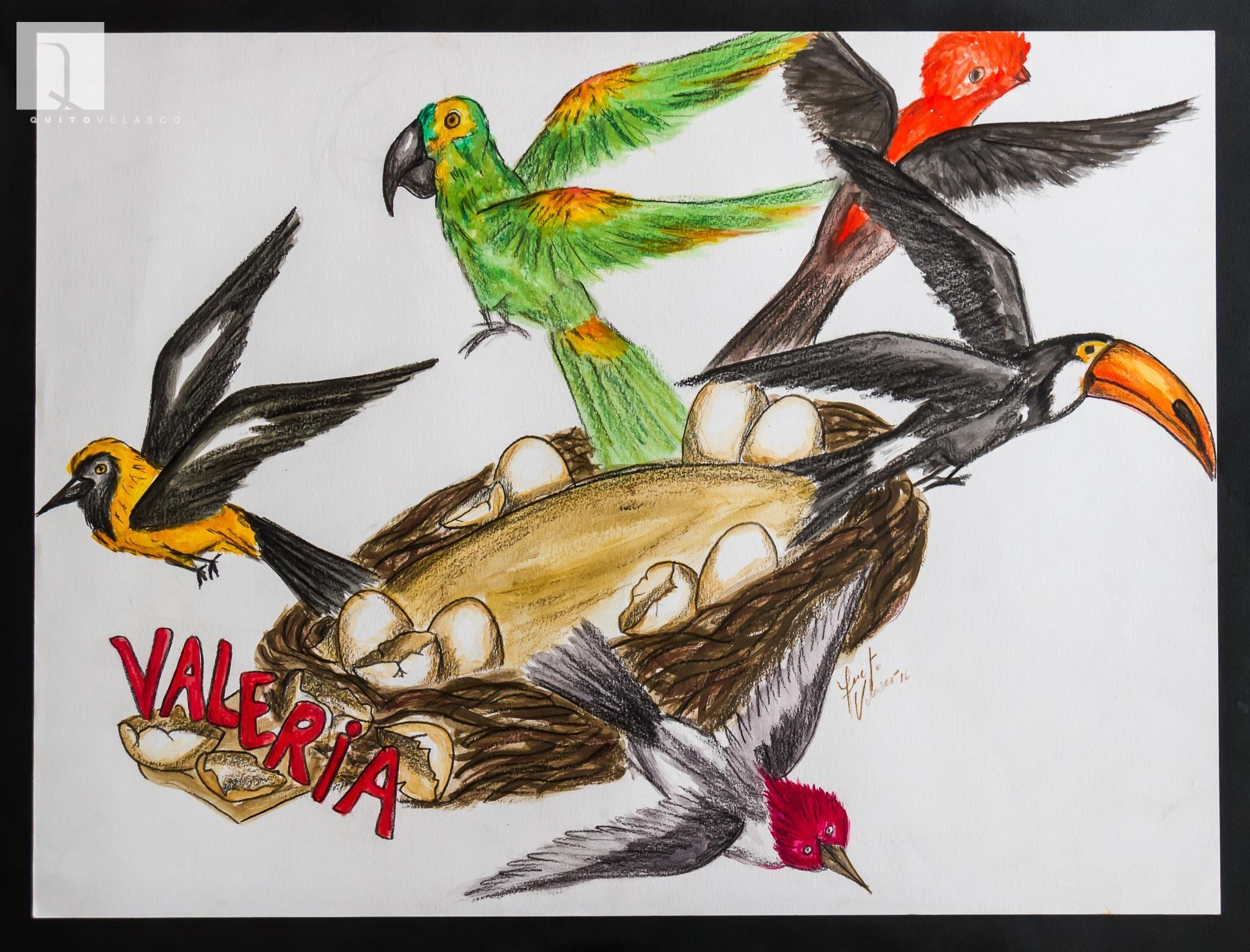 """Diseño del carro del corso de la reina del carnaval 21016, Valeria Saucedo, realizado por Quito Velasco. Bajo el nombre de """"Pichona Real"""", esta alegoría, inspirada en el nombre de la comparsa coronadora, los Pichones, representa a cinco aves (tucan, loro, matico, cardenal y gallito de la roca) rodeando un gran nido que simboliza el renacer del Carnaval."""