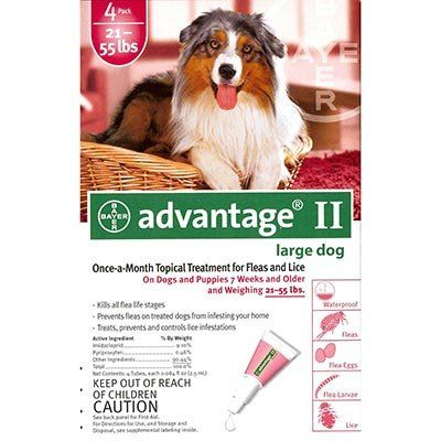 Advantage Ii Flea Drops For Dogs 21 55 Lbs 4 Month Dose Details Can Be Found Flea And Tick Control With Images Flea Control For Dogs Dogs And Puppies Fleas