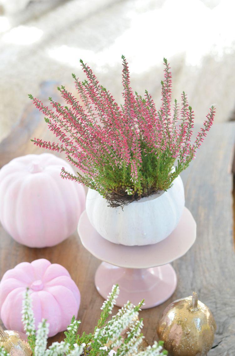 Rosa gold tischdeko mit k rbissen basteln pinterest - Tischdeko mit kurbissen ...