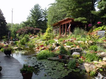 beautiful outdoor gardening