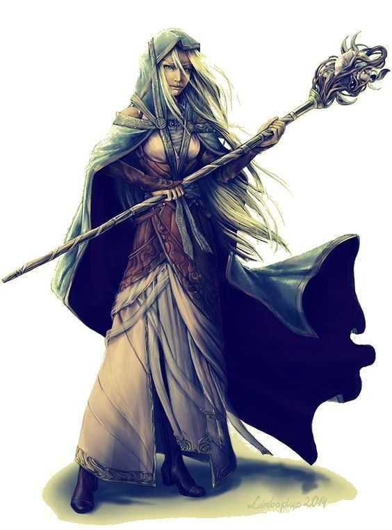DnD female druids, monks and rogues - inspirational