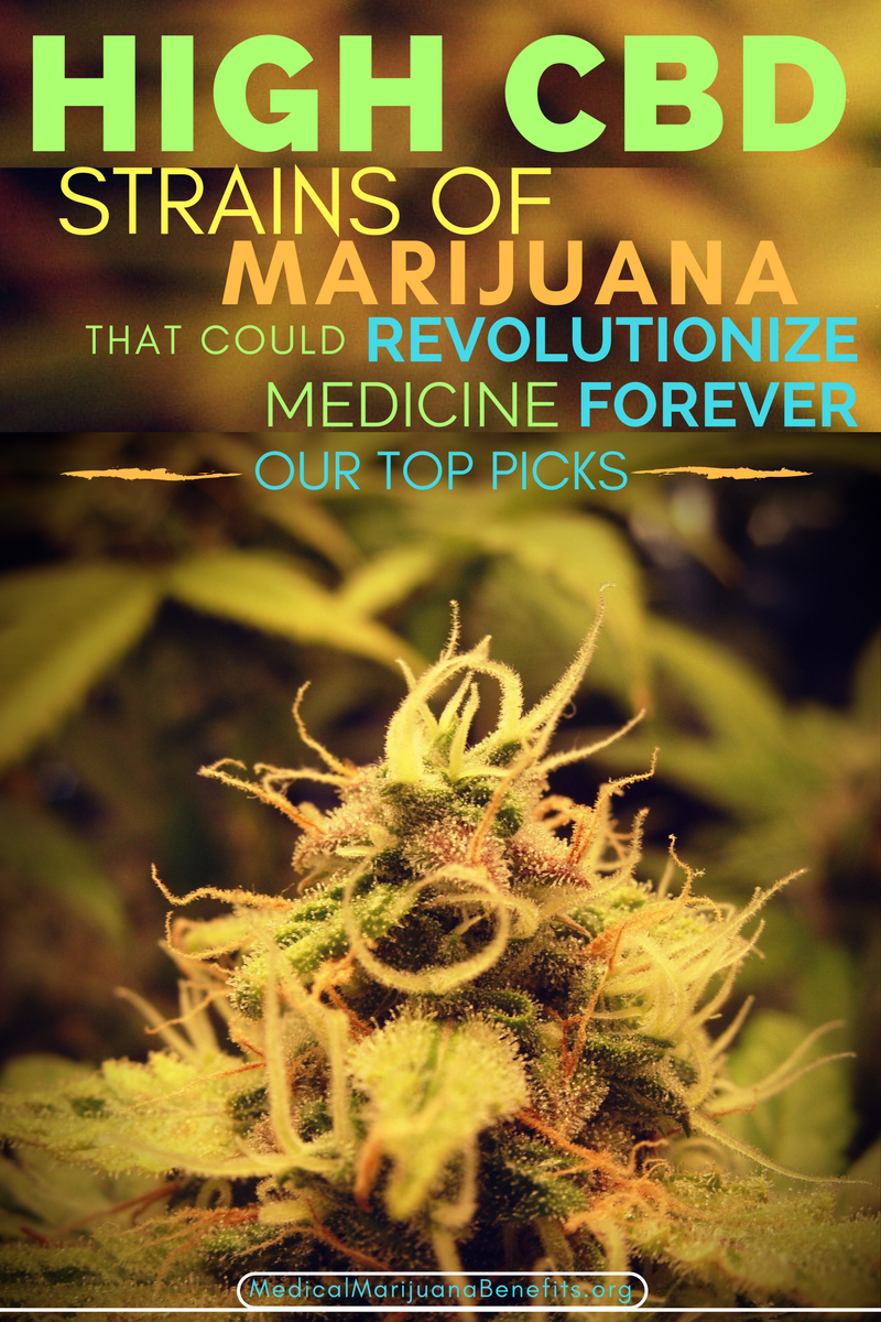 an overview of the medical benefits of marijuana Medical marijuana users would agree that the best no-nonsense painkiller out there is the daily usage of marijuana, and is quickly becoming hand over fist the highest demand medical product on the market in fact, many researchers would agree that benefits of medical marijuana truly exist peer.