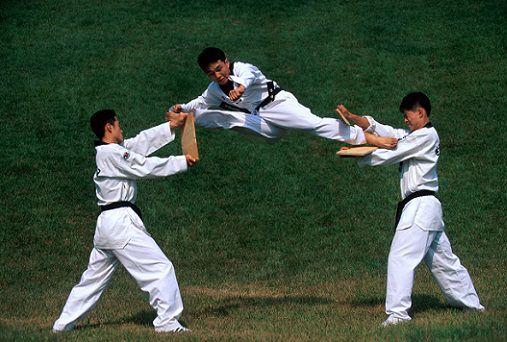 Taekwondo diferencia karate ¿cuáles son