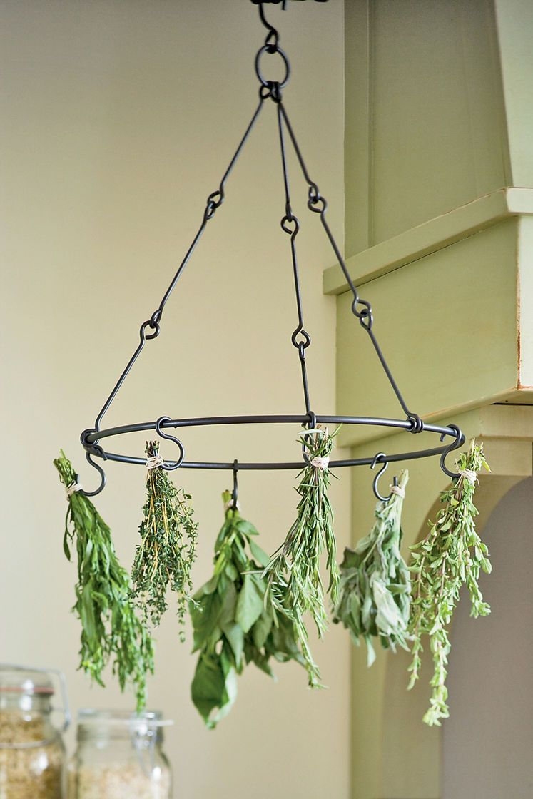 Herb Drying Rack for Preserving Herbs   Gardener's Supply is part of Herb drying racks, Indoor vegetable gardening, Drying herbs, Garden supplies, Vertical herb garden, Indoor vegetables - This powdercoated steel drying rack for herbs and flowers dries six bunches of flowers, herbs, hot peppers and garlic, too  Just cut, tie and hang