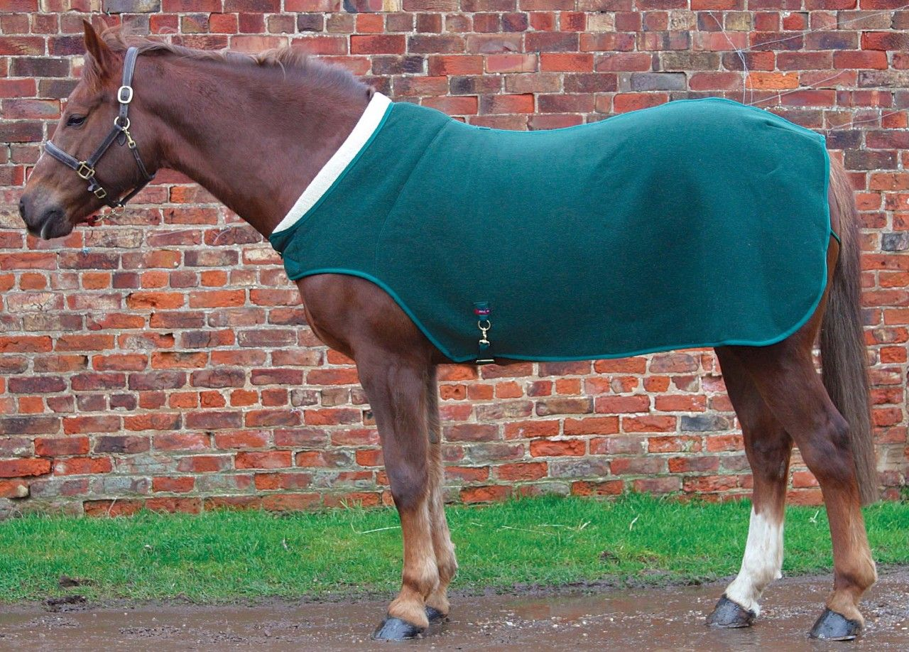 Comfort Zone Walker Lapel Rug Edgemere Ltd Equestrian Supplies Https Www