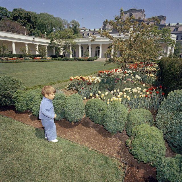 Tour The White House Rose Garden Through Jackie O's Eyes