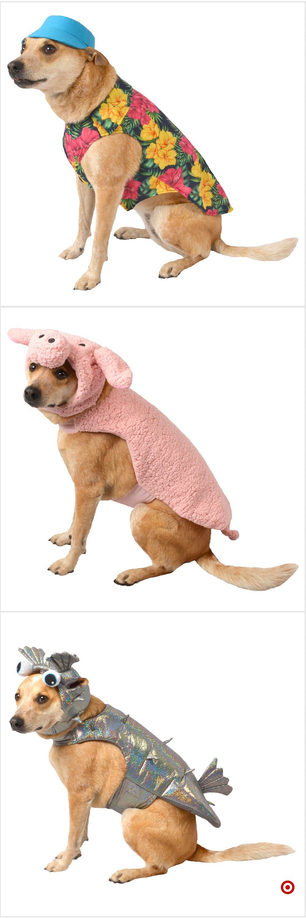 Shop Target for pet costume sets you will love at great