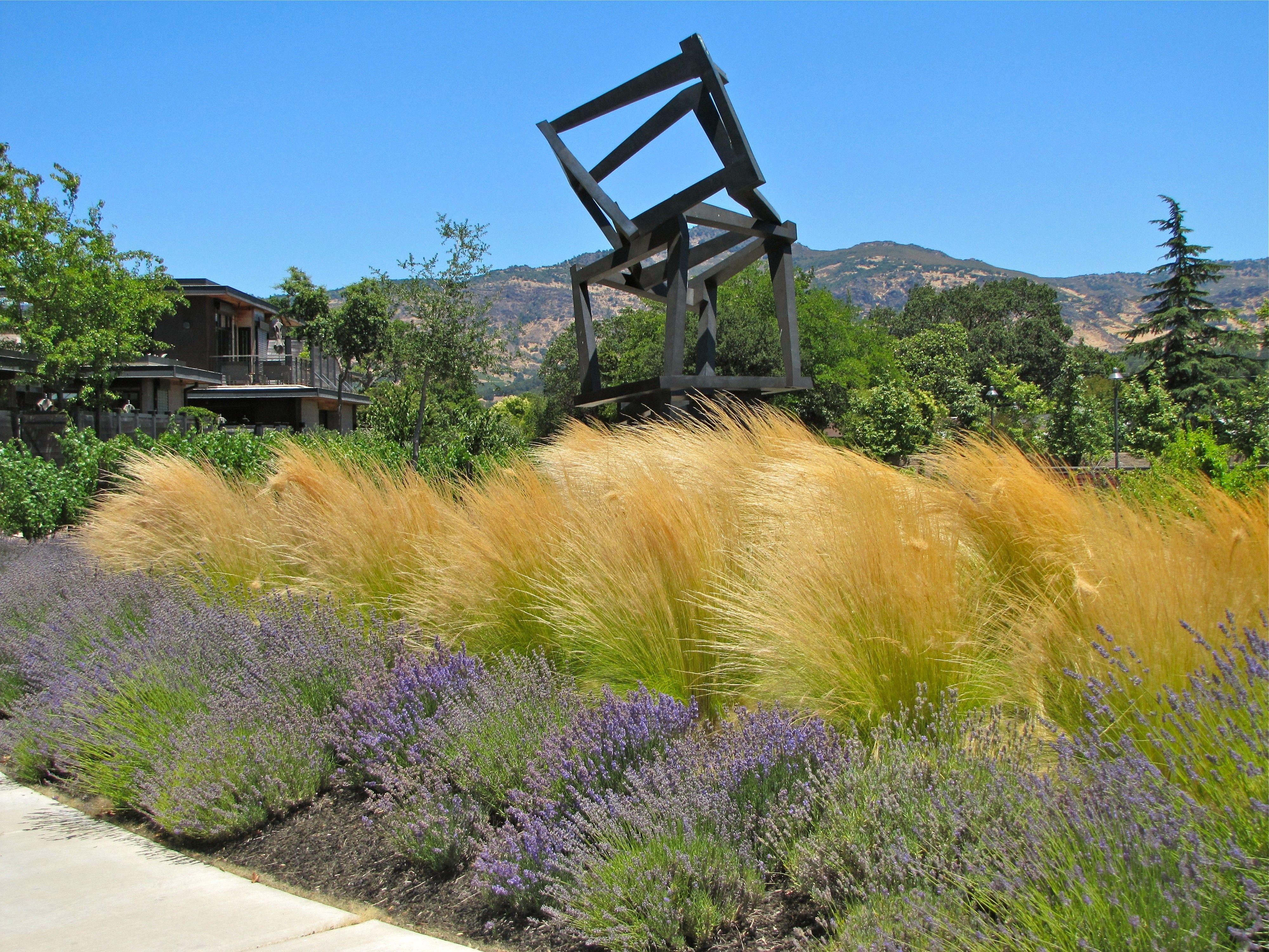 Mexican Feather Grass For Inspiring Garden Plants Ideas