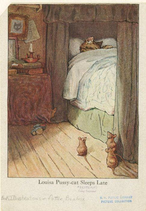 sleeping cat in a canopy bed | BEATRIX POTTER | Pinterest | Illustrations and Art illustrations & sleeping cat in a canopy bed | BEATRIX POTTER | Pinterest ...