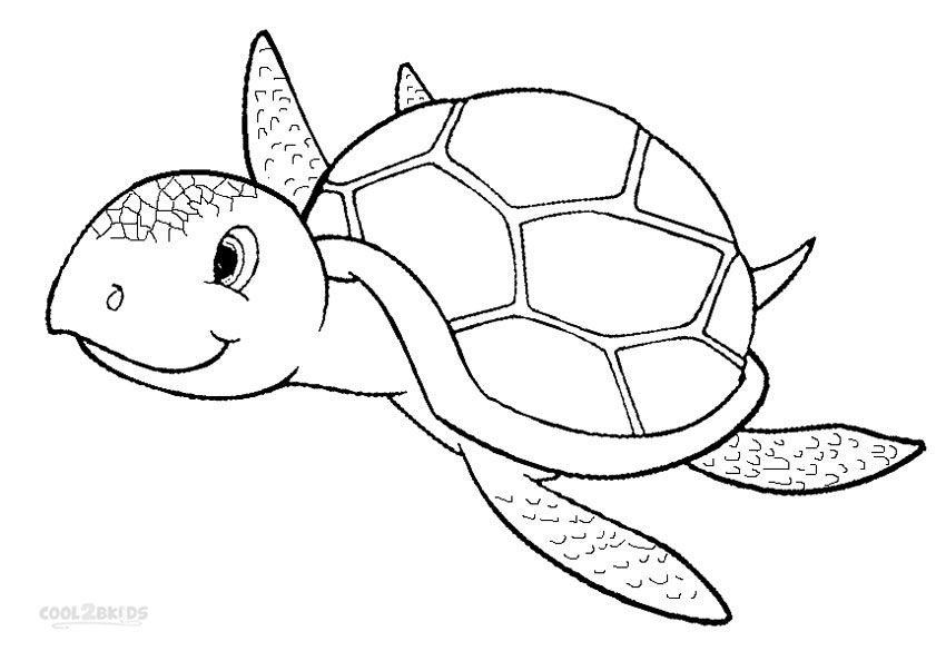 It S Just A Picture Of Simplicity Sea Turtle Coloring Pages In 2020 Turtle Coloring Pages Turtle Drawing Sea Turtle Drawing