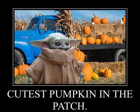 Pin By Lazydaisy On Baby Yoda In 2020 Yoda Funny Yoda Halloween Star Wars Humor
