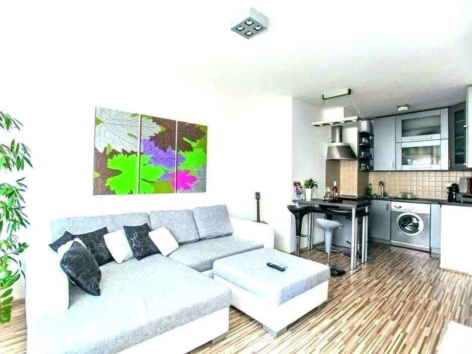 Image Result For Small Living Room Bedroom Combination Living Room Bedroom Combination Small Living Room Living Room Bedroom