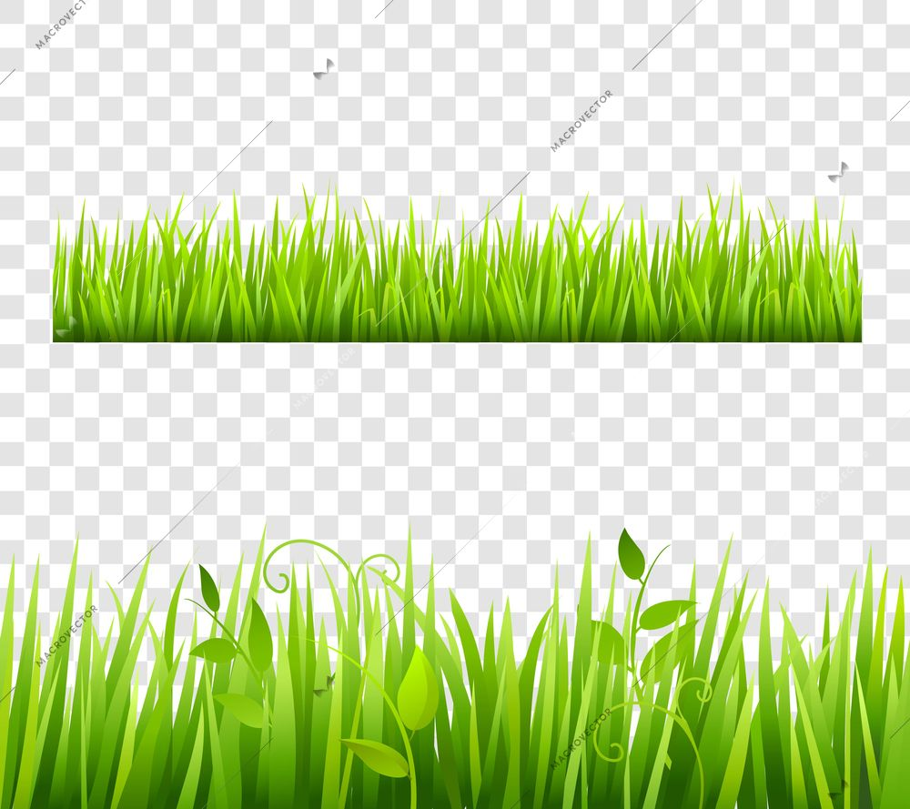 Green And Bright Grass Border Tileable Transparent With Plants Flat Isolated Vector Illustration Grass Vector Vector Free Background Images Wallpapers