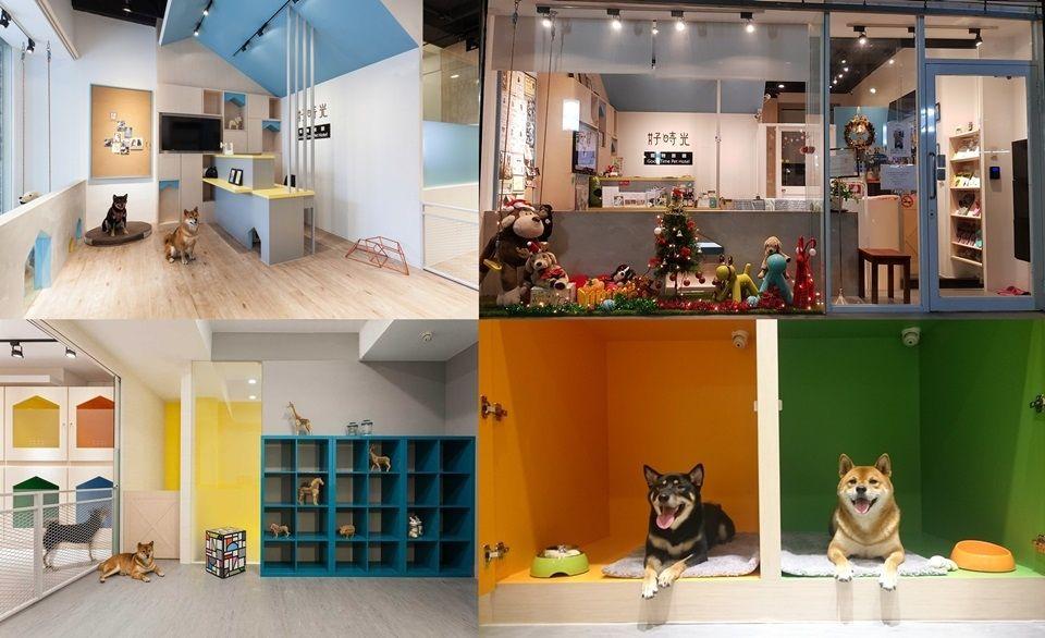 Pet Hotel Dubai Pet Hotel Hotel Pets