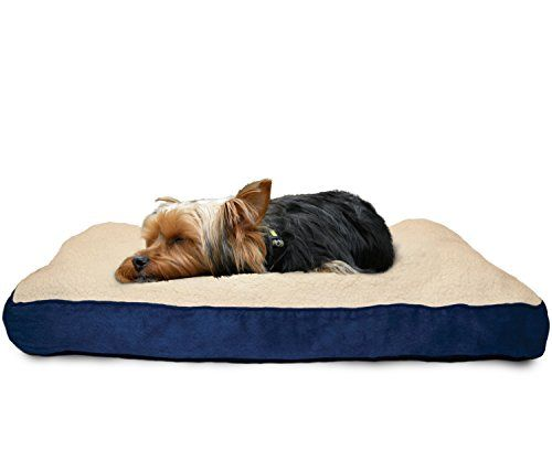 Furhaven Pet Sherpa And Suede Deluxe Fiber Pillow Dog Bed With Waterresistant Base Creamnavy Medium Find Out Dog Pet Beds Dog Bed Furniture Dog Pillow Bed