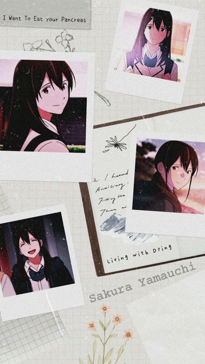 Sakura Yamauchi Anime Classroom Cute Anime Wallpaper Sakura Yamauchi Wallpaper
