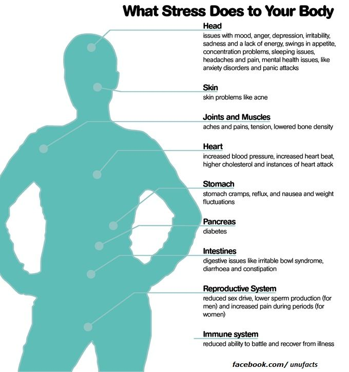 Stress, what it does to your body.
