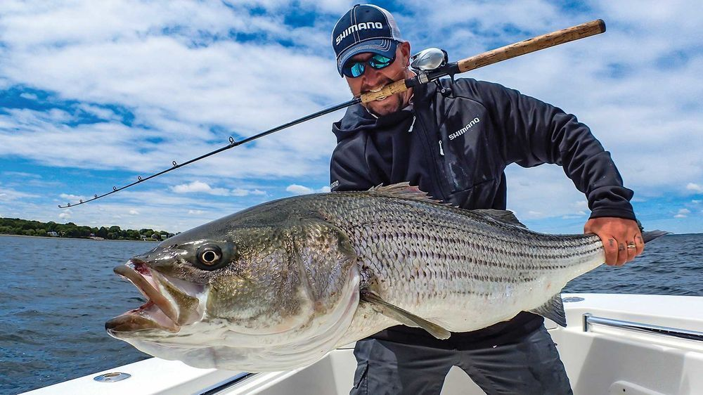 Best lures for striped bass striped bass striped bass