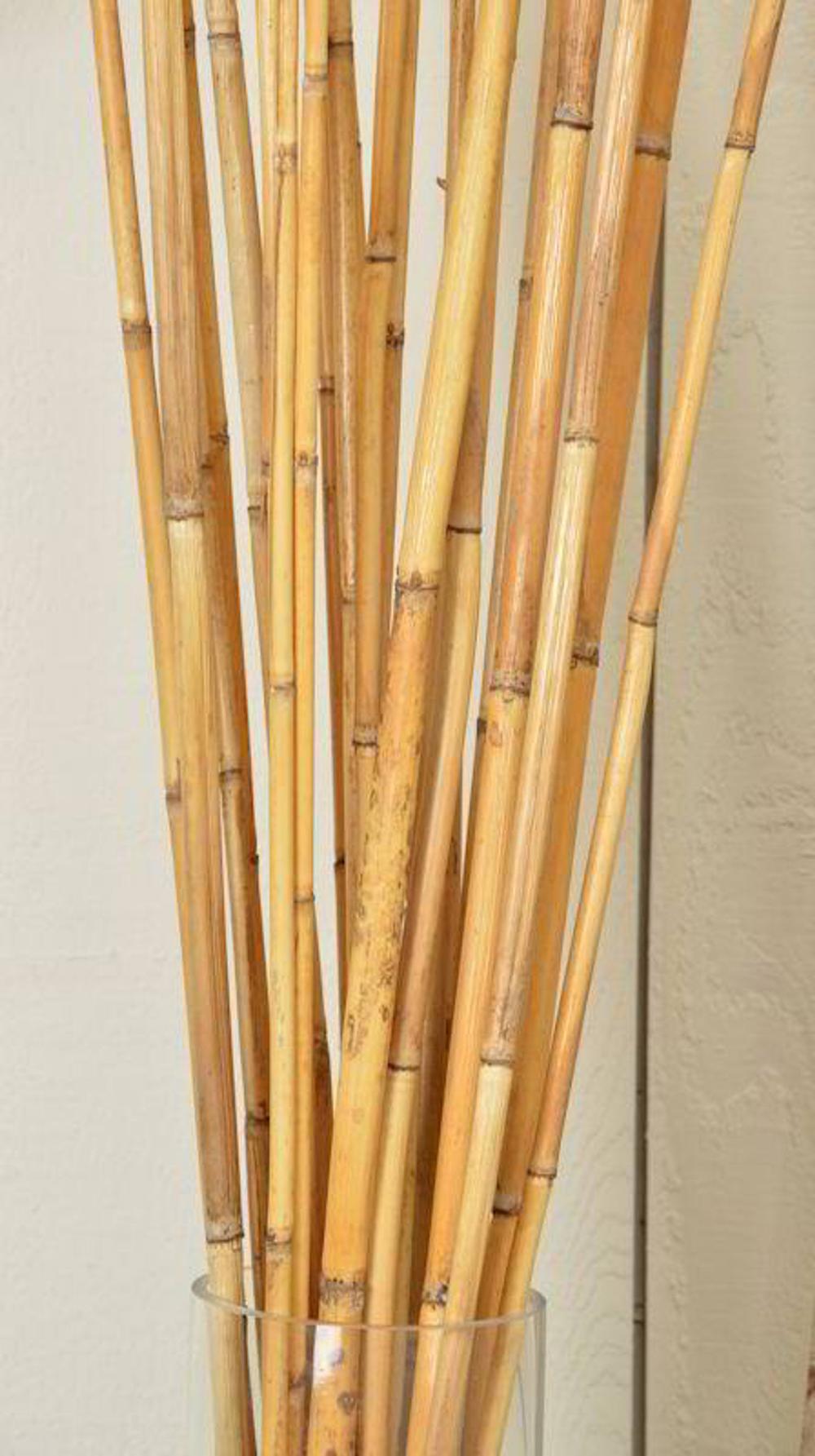 River Cane Bamboo Dried Bamboo Decorative Bamboo Dried Etsy Bamboo Sticks Decor Bamboo Decor Bamboo Diy