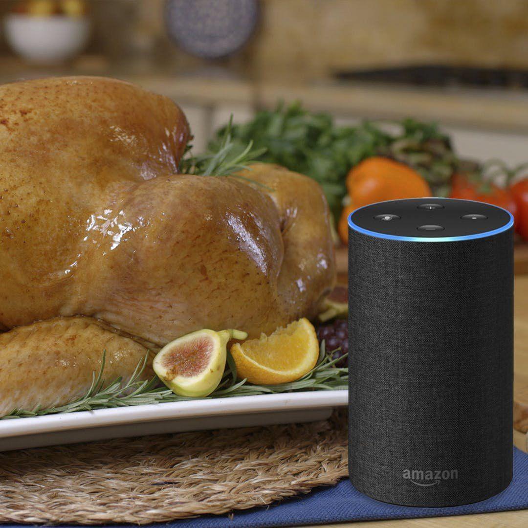Call the Turkey TalkLine on Amazon Alexa for All Your